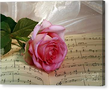 A Tribute To Diana Ross The Rose Canvas Print by Inspired Nature Photography Fine Art Photography
