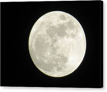 A Winter'sfullmoon Over Ga Canvas Print by Aaron Martens