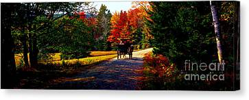 Canvas Print featuring the photograph  Acadia National Park Carriage Trail Fall  by Tom Jelen