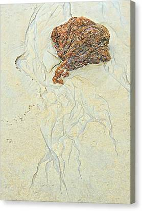 Beach Sand  2 Canvas Print
