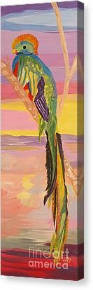 Beautiful Bird Quetzal Must Open  Canvas Print