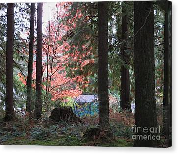 Beauty Through The Trees Canvas Print by Joyce Gebauer