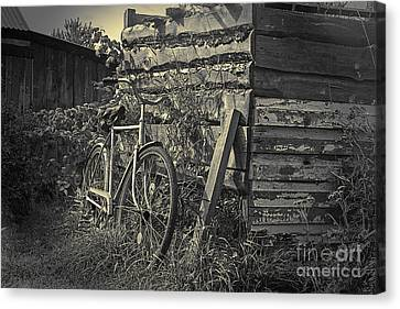 Canvas Print featuring the pyrography  Bicycle by Evgeniy Lankin