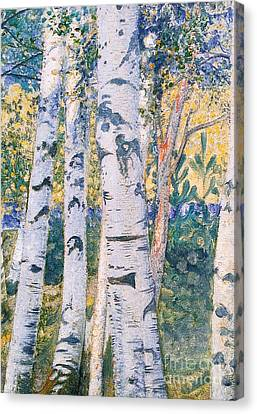 Autumn Leaf Canvas Print -  Birch Trees by Carl Larsson