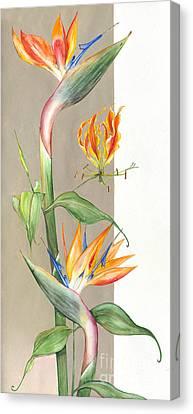 Bird Of Paradise 09 Elena Yakubovich Canvas Print