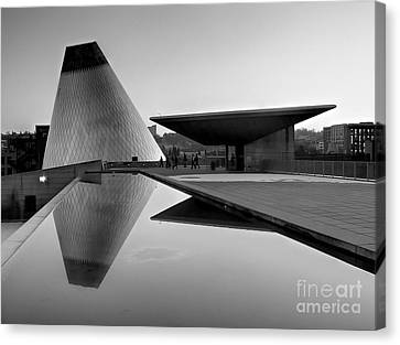 Black And White Mog Reflections  Canvas Print by Chris Anderson