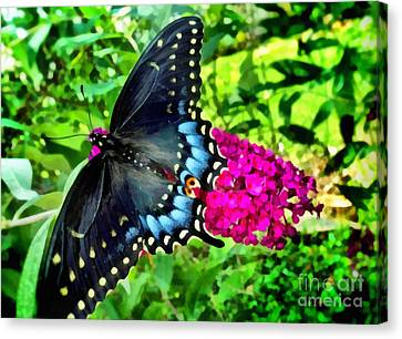 Butterfly Beauty Canvas Print by SiriSat