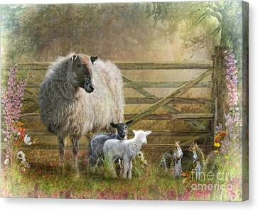 By The Gate Canvas Print by Trudi Simmonds