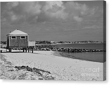 Cape Cod Winter Morning Canvas Print by Catherine Reusch  Daley