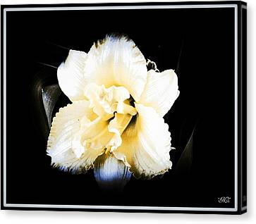 Canvas Print featuring the photograph  Daylily by Michelle Frizzell-Thompson