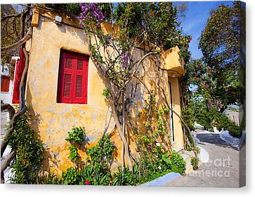 Decorated House With Plants Canvas Print by Aiolos Greek Collections