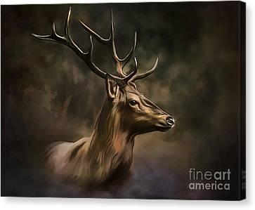 Deer Canvas Print by Andrzej Szczerski