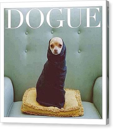 😂😂😂😂 #dogue #vogue Canvas Print by Matheo Montes