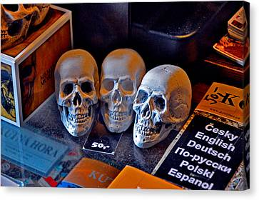 Don't Want To Buy The Skull? Canvas Print by Andy Za