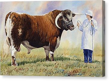 English Longhorn Bull Canvas Print by Anthony Forster
