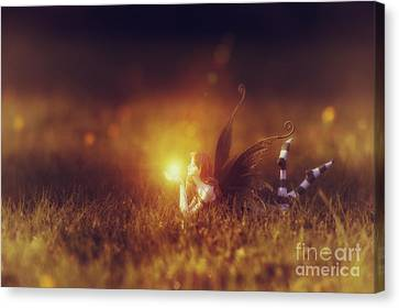 Starry Canvas Print -  Faerie Light  by Tim Gainey