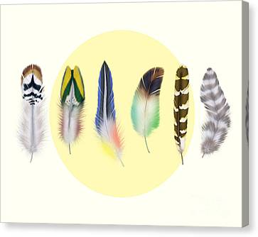 Feathers 2 Canvas Print by Mark Ashkenazi