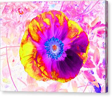 Fervor And Passion Flower 2 Canvas Print by Kenneth James