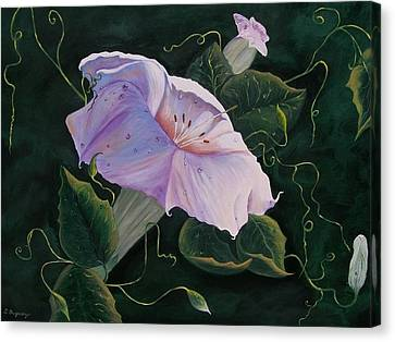 First  Trumpet Flower  Of Summer Canvas Print by Sharon Duguay