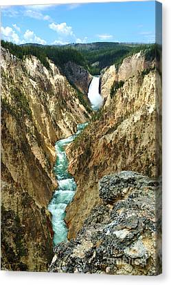 Grand Canyon Of Yellowstone National Park Canvas Print by Micah May