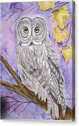 Grey Owl Canvas Print by Belinda Lawson
