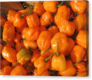Habanero Peppers Canvas Print