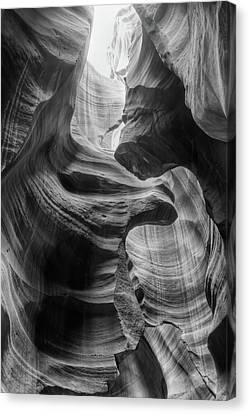 Heavenly Light - Black And White Canvas Print by Harold Rau