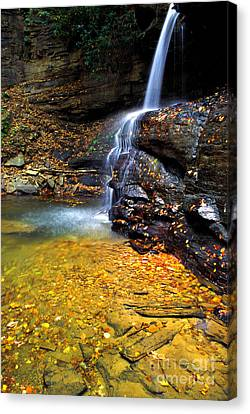 Holly River State Park Upper Falls Canvas Print by Thomas R Fletcher