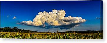 I Really Don't Know Clouds At All Canvas Print by Randy Scherkenbach