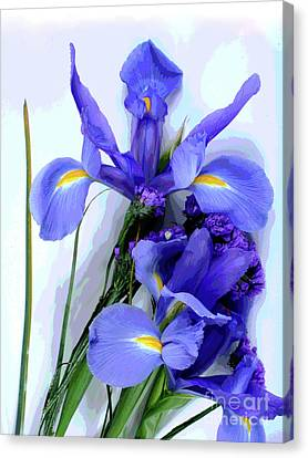 Iris -- Pretty In Purple-1 Canvas Print