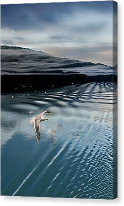 Journey With A Sea Gull Canvas Print