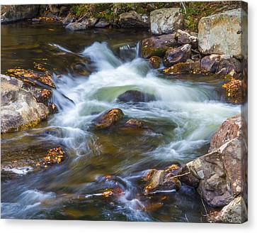 Linville Falls  Canvas Print by Patricia Schaefer