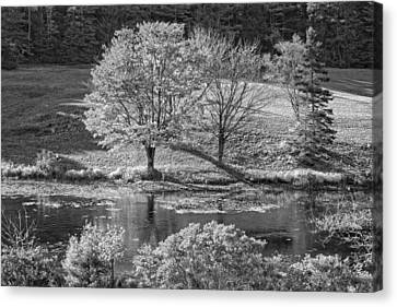 Long Pond On Mount Desert Island In Maine Canvas Print by Keith Webber Jr