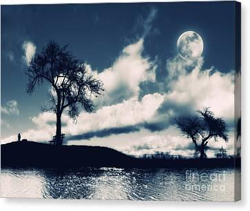 Moon Canvas Print by ARTSHOT  - Photographic Art