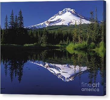 Canvas Print featuring the photograph  Mount Hood Oregon  by Paul Fearn
