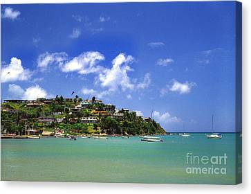 Naguabo Shoreline Canvas Print by Thomas R Fletcher