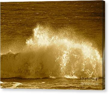Ocean Life Remembers  Canvas Print by Q's House of Art ArtandFinePhotography