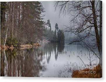 Canvas Print featuring the photograph  One Solemn Spring In May by Rose-Maries Pictures