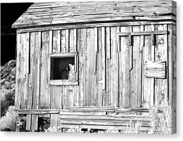 One Window Canvas Print by Cat Connor