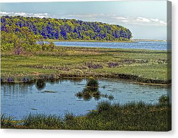 Picturesque Pinquickset Cove On Popponesset Bay Canvas Print by Constantine Gregory