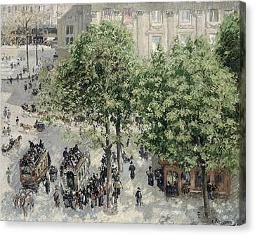 Place Du Theatre Francais Canvas Print by Camille Pissarro