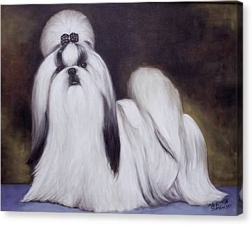 Pretty Showdog Shih Tzu Canvas Print
