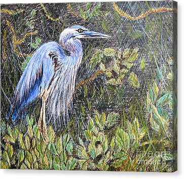 Canvas Print featuring the painting  Ptg  Blue Heron by Judy Via-Wolff