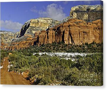 Red Rock-secret Mountain Wilderness Canvas Print by Bob and Nadine Johnston