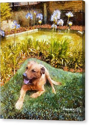 Canvas Print featuring the painting Alameda Rufus by Linda Weinstock