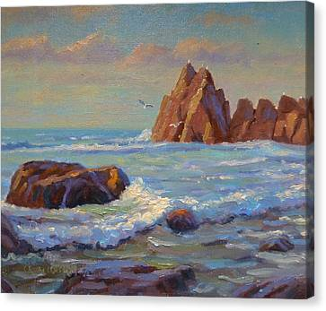 Rocks West Coast Canvas Print by Terry Perham