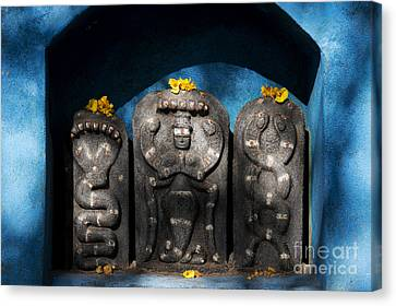 Rural Indian Hindu Shrine  Canvas Print by Tim Gainey
