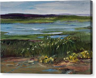 Salt Marsh Canvas Print by Diane Ursin