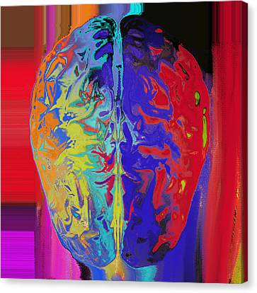 Shiny Brain Canvas Print by Soumya Bouchachi
