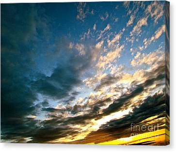 Sky Sings Canvas Print by Q's House of Art ArtandFinePhotography